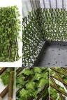 شبك جدران قابل للتمدد على شكل أوراق شجر خضراء